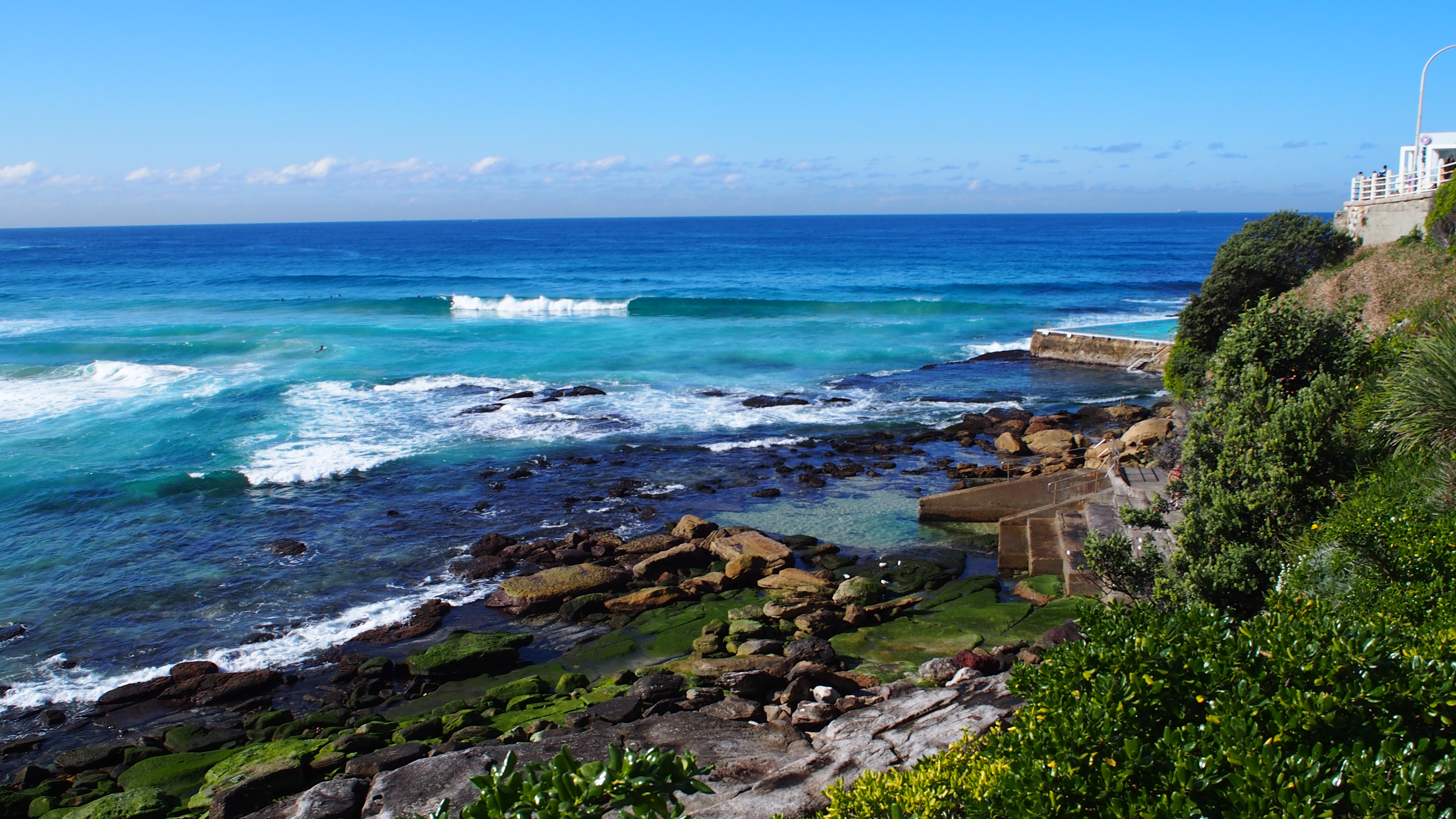 Escape to Nature in Sydney