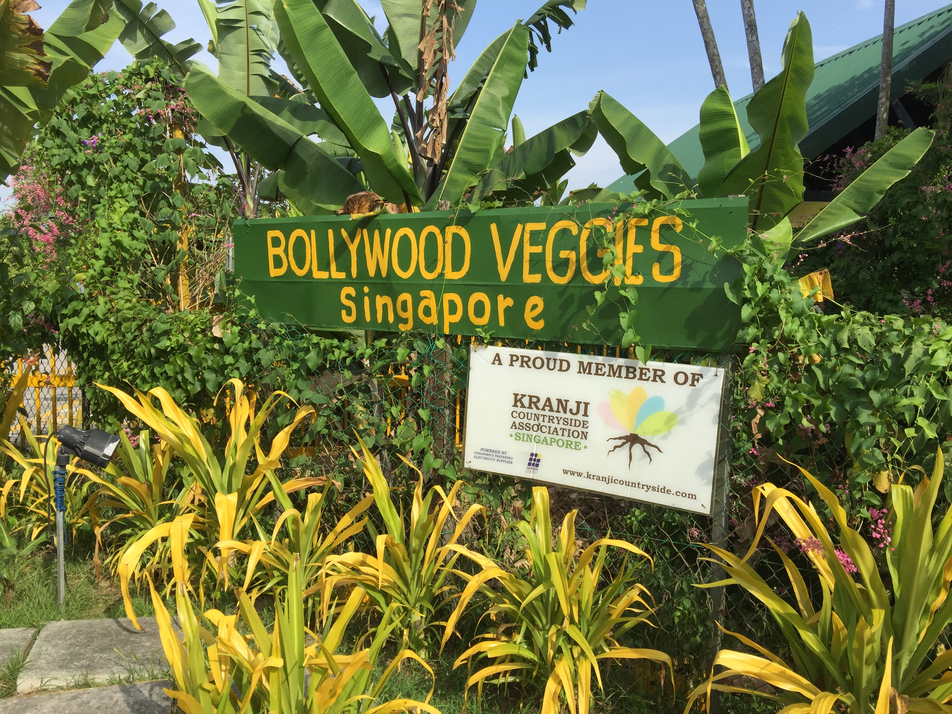 Escape to Nature in Singapore: Bollywood Veggies